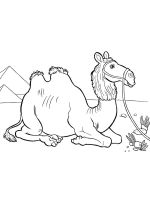 African-animals-coloring-pages-18