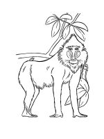 African-animals-coloring-pages-2