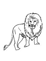 African-animals-coloring-pages-21