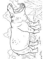 African-animals-coloring-pages-27