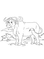 African-animals-coloring-pages-4