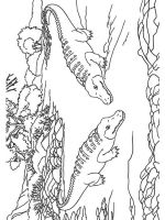 Alligator-coloring-pages-5