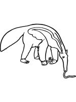Anteater-coloring-pages-10