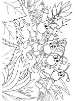 Ant-coloring-pages-43