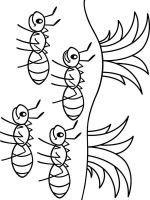 Ants-coloring-pages-1
