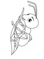 Ants-coloring-pages-14
