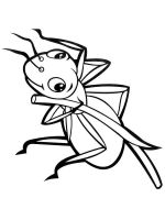 Ants-coloring-pages-3