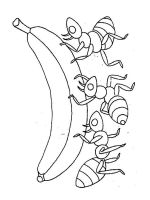 Ants-coloring-pages-8