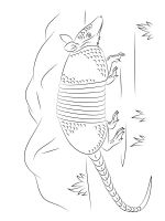 Armadillos-coloring-pages-15