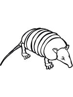 Armadillos-coloring-pages-7