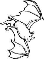 Bat-coloring-pages-8