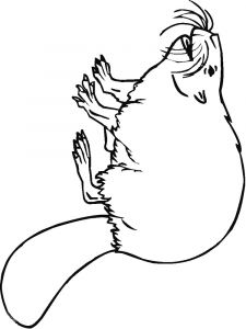 Beaver-animal-coloring-pages-340
