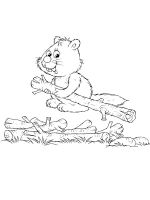 coloring-pages-Beaver-17