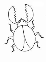 Beetles-coloring-pages-16