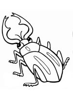 Beetles-coloring-pages-21