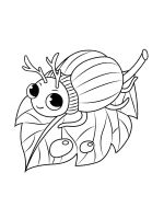 Beetles-coloring-pages-24