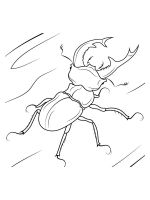 Beetles-coloring-pages-28