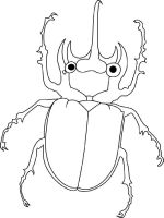 Beetles-coloring-pages-3