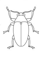 Beetles-coloring-pages-7