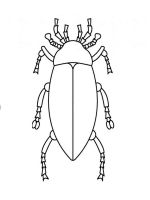 Beetles-coloring-pages-8
