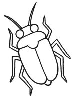 Beetles-coloring-pages-9