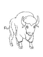 bison-coloring-pages-15