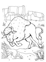 bison-coloring-pages-20