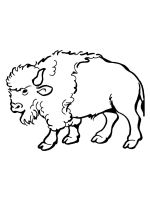 bison-coloring-pages-4