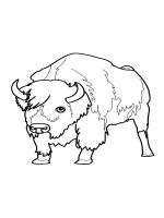 bull-coloring-pages-17