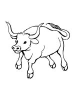bull-coloring-pages-23
