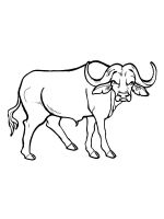bull-coloring-pages-9