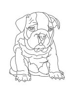 Bulldog-coloring-pages-7