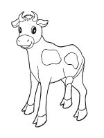 Calf-coloring-pages-16