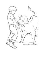 Calf-coloring-pages-6