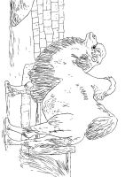 Camel-animal-coloring-pages-342