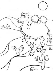 Camel-animal-coloring-pages-348