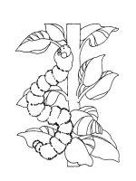 Caterpillar-coloring-pages-2