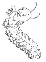 Caterpillar-coloring-pages-5