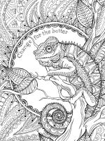 chameleon-coloring-pages-2