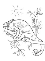 chameleon-coloring-pages-24