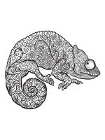 chameleon-coloring-pages-6
