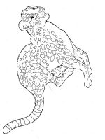 Cheetah-animal-coloring-pages-339