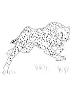 Cheetah-coloring-pages-1