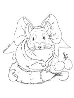 Chinchilla-coloring-pages-1
