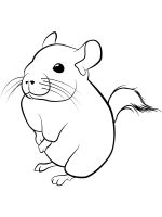 Chinchilla-coloring-pages-11