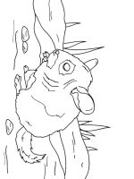 Chinchilla-coloring-pages-4