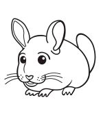 Chinchilla-coloring-pages-6