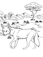 Coyote-coloring-pages-10
