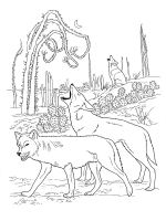 Coyote-coloring-pages-18