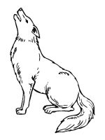 Coyote-coloring-pages-2
